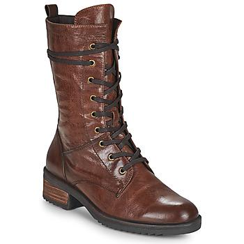 kengät Naiset Bootsit Caprice 25202-351 Konjakki