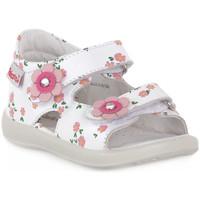 kengät Pojat Sandaalit ja avokkaat Naturino FALCOTTO 0N01 BESENVAL WHITE Bianco