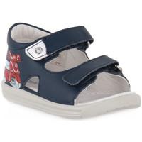 kengät Pojat Sandaalit ja avokkaat Naturino FALCOTTO 0C02 BLAVET NAVY Blu