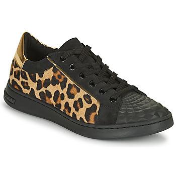 kengät Naiset Matalavartiset tennarit Geox JAYSEN Musta / Leopardi