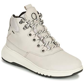 kengät Naiset Bootsit Geox AERANTIS Harmaa