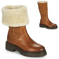 kengät Naiset Bootsit Geox IRIDEA Ruskea