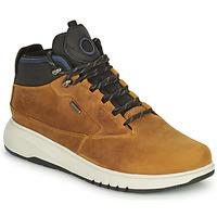 kengät Miehet Bootsit Geox AERANTIS Kamelinruskea
