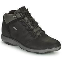 kengät Miehet Bootsit Geox NEBULA Musta