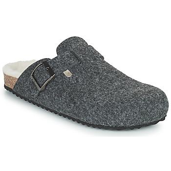 kengät Naiset Tossut Geox BRIONIA Harmaa