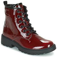 kengät Tytöt Bootsit Geox CASEY Viininpunainen