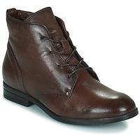 kengät Naiset Bootsit Dream in Green NERGLISSE Ruskea