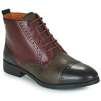 kengät Naiset Bootsit Pikolinos ROYAL Viininpunainen / Musta / Ruskea
