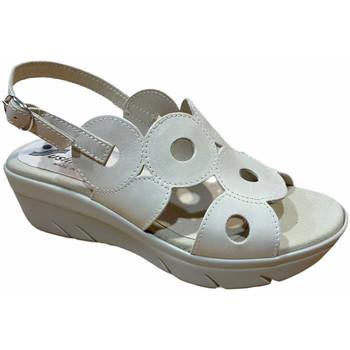 kengät Naiset Sandaalit ja avokkaat Susimoda SUSI3927sasso grigio