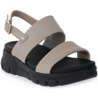 kengät Naiset Sandaalit ja avokkaat Frau TAUPE CLUD Marrone