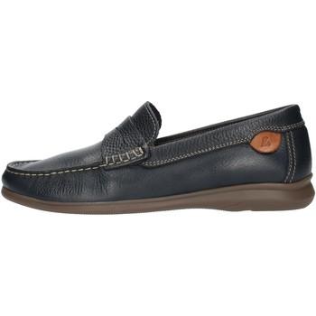 kengät Miehet Mokkasiinit Luisetti 33901NA Blue
