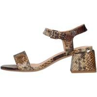 kengät Naiset Sandaalit ja avokkaat Alma Blue V21BL8700 BEIGE