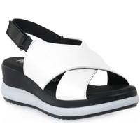 kengät Naiset Sandaalit ja avokkaat Pepe Menargues TRIPOLI BIANCO Bianco
