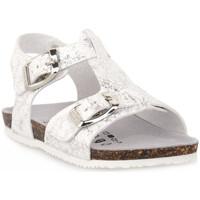 kengät Pojat Sandaalit ja avokkaat Gold Star BIANCO Bianco