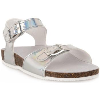 kengät Pojat Sandaalit ja avokkaat Gold Star GHIACCIO Grigio