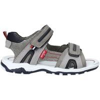 kengät Lapset Sandaalit ja avokkaat Levi's VMIA0030S Harmaa