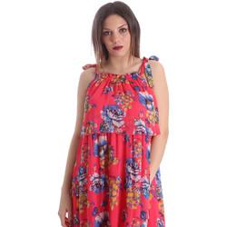 vaatteet Naiset Mekot Gaudi 911FD15039 Vaaleanpunainen