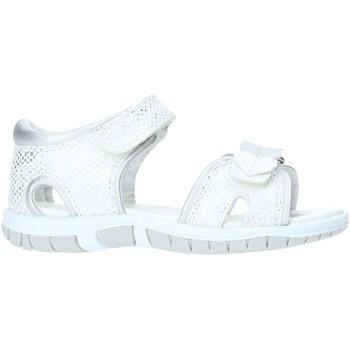 kengät Lapset Sandaalit ja avokkaat Chicco 01063387000000 Valkoinen