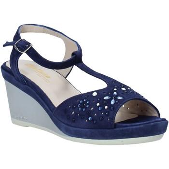 kengät Naiset Sandaalit ja avokkaat Melluso HR70511 Sininen