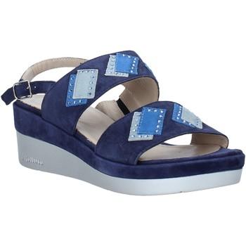 kengät Naiset Sandaalit ja avokkaat Melluso HR70717 Sininen