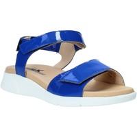 kengät Naiset Sandaalit ja avokkaat Melluso Q60220X Sininen