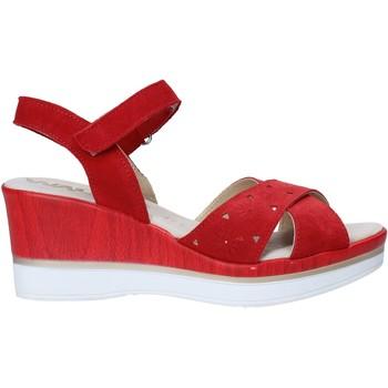 kengät Naiset Sandaalit ja avokkaat Melluso 037064F Punainen