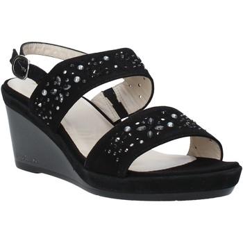 kengät Naiset Sandaalit ja avokkaat Melluso HR70512 Musta