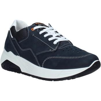 kengät Miehet Matalavartiset tennarit IgI&CO 7125222 Sininen