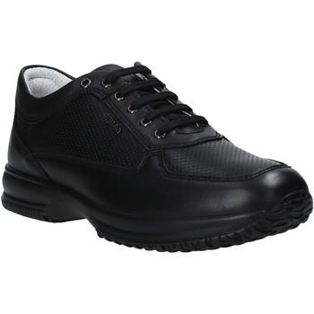 kengät Miehet Matalavartiset tennarit IgI&CO 7119000 Musta