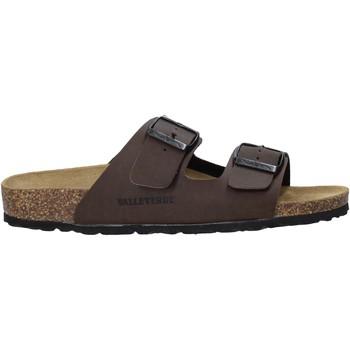kengät Miehet Sandaalit Valleverde G51800P Ruskea