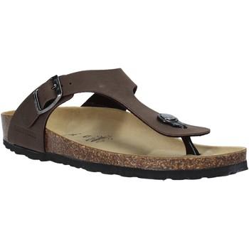 kengät Miehet Varvassandaalit Valleverde G51830 Muut