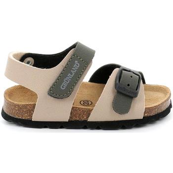 kengät Lapset Sandaalit ja avokkaat Grunland SB0231 Beige