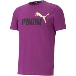 vaatteet Miehet Lyhythihainen t-paita Puma 586759 Violetti