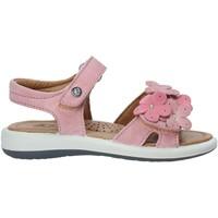 kengät Tytöt Sandaalit ja avokkaat Naturino 502555 03 Vaaleanpunainen