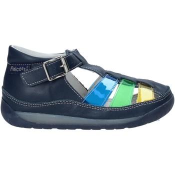 kengät Lapset Sandaalit ja avokkaat Falcotto 1500746 02 Sininen