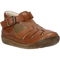 kengät Lapset Sandaalit ja avokkaat Falcotto 1500746 07 Ruskea