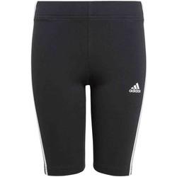 vaatteet Tytöt Legginsit adidas Originals GN4090 Musta