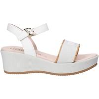 kengät Tytöt Sandaalit ja avokkaat Alviero Martini 0647 0911 Valkoinen