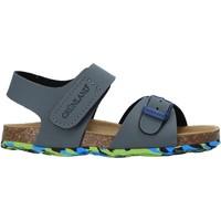 kengät Lapset Sandaalit ja avokkaat Grunland SB1640 Harmaa