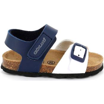 kengät Lapset Sandaalit ja avokkaat Grunland SB1892 Sininen