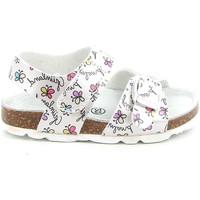 kengät Lapset Sandaalit ja avokkaat Grunland SB1663 Valkoinen