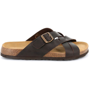kengät Miehet Sandaalit Grunland CB2635 Ruskea