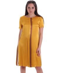 vaatteet Naiset Lyhyt mekko Café Noir JA6260 Keltainen