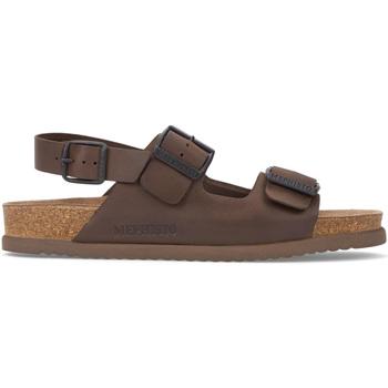kengät Miehet Sandaalit ja avokkaat Mephisto P5117407 Ruskea