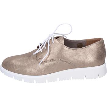 kengät Naiset Derby-kengät Gatta BJ950 Ruskea