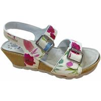 kengät Naiset Sandaalit ja avokkaat Mephisto MEPHALYCEfiori bianco