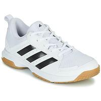 kengät Naiset Sisäurheilukengät adidas Performance Ligra 7 W Valkoinen