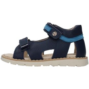 kengät Pojat Sandaalit ja avokkaat Balducci CITA4352 BLUE