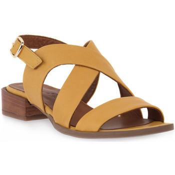 kengät Naiset Sandaalit ja avokkaat Grunland GIALLO L6FATI Giallo