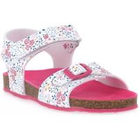 kengät Pojat Sandaalit ja avokkaat Grunland FUXIA 70 DESI Rosa